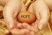 Egg Donation in Delhi india / Our donors and surrogates undergo a complete screening for general physical and mental health, transmissible diseases and fertility and we make sure that they provide their complete family medical history.