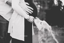 Maternity with dog