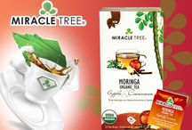 Super Cup of Tea / Experience Miracle Tree's Super Cup of Tea with our award winning moringa blends! #superfood #organic #moringa #tea