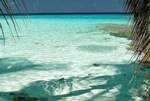 Maceio - Lindas praias