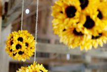 Sunflower fest ideas