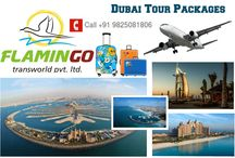 Dubai Tour Packages / We aspire to become the biggest vegetarian meal tour operator in the world and always wish to give value for money holiday to our patrons seeing the world.
