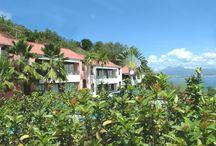 Jardin de Panoramic / Le jardin de Panoramic Hôtel, Martinique