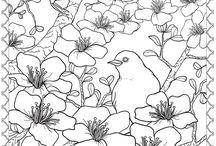 COLORING PAGES / by CHRISTINE DIPIERRO