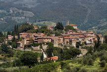 Montefioralle / Het middeleeuwse Montefioralle, gelegen nabij Greve in Chianti, is gelegen op een heuvel van waaruit je een prachtig zicht hebt op de Chianti streek.