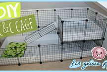 Guineapig cage