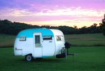 I love camping! / by Janice Search