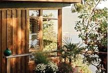 landscape and deck