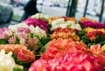 bei fiori