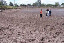 Argentina-Geografía / Ambientales: -Escasez de agua -Contaminacion urbana -Deforestacion -Inundaciones -Desertificacion