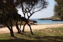Menorca dreams