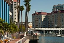 Tampa Bay Community - Dimmitt Automotive Group