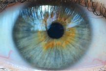 OČI (eyes)