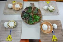 Provocations for Learning and Play
