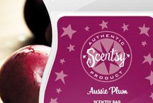Scentsy Classic Bars / Scentsy Classic Bar Scents are a mix of some of Scentsy's best bar scents that have been since the beginning.