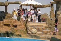 اجمل الاماكن السياحية فى مصر / تعرفوا على اجمل الاماكن السياحية فى كل محافظات مصر