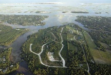 Lot 98 Aster Place / Wooded lot in Waterfront gated community 140 homesites. 4BR on-site septic permit in hand, Non-Expiring. Proposed Amenities to include: Clubhouse with Movie Theatre & Fitness Center, Pool, Kayak Launch, Tennis Facility and Nature Trails. Natural cypress ponds. Underground utilities. HOA 635/yr. Award winning Topsail School District. Topsail Beaches & Camp LeJeune North, Wilmington and I-40 South.