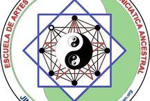 Escuela JING CHI SHEN / Escuela de Artes Orientales y Sabiduría Iniciática Ancestral  Ip Man Wing chung Kuoshu Kung Fu Wushu y Shaolin Kung Fu Tai Chi Chuan Chi Kung Nei Kung Nei Dan Reiki Magnetoterapia Acupuntura Electroacupuntura Ventosaterapia Moxibustión