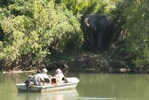 Kaingu Activities  / Just some shots of the various activities we do at Kaingu