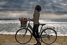 Bicycle  / #Bicycle