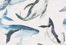 Whale / Drawings