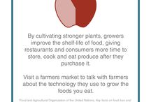 Food Insecurity and Food Loss