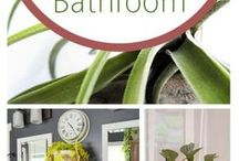 Plants that grow well in the bathroom