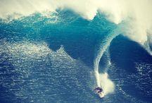 feel the ocean breeze