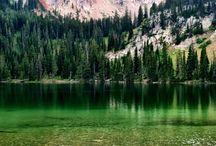 State: Montana