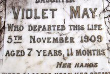 ~Violet May~ / ...and in our aching hearts we have no Violet now.