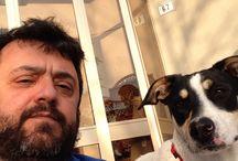 Furia / La nostra cagnolina