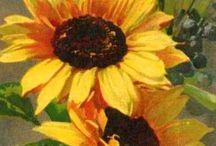 Słoneczniki sunflowers