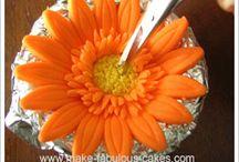 marcip kvety