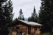 CabiN & foRest