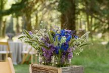 weddings / by Tanya Remlinger Dais