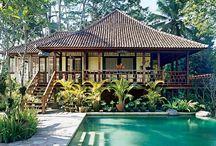/ jungle retreat