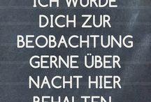 Schnute6 / VW Käfer / Zillertal Herbie Tour