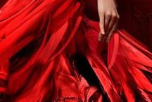 ♥ PASSIONATE RED ♥ / Everything beautifully  red
