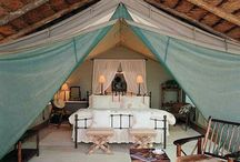 Glamping / by Alison Renfro (New)
