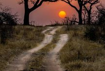 Amazing Nature Photos / http://www.photoaxe.com Amazing Photos - mostly nature. Best selection!