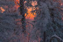 Живописные пейзажи зима