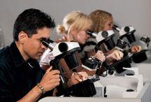 Gemology & Diamonds Courses / Short term Course Gemmology & Diamond Grading. New Training Batch starting soon, Regular and weekend classes, Live training work, Small Batch, Register Now!!