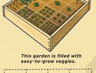 GARDENING: IDEAS AND DIY CRAFTS / by Sylvia Nelson-Campbell