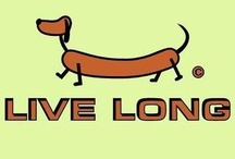 Sausage Dog Delight / Delightful products, images, crafty and arty featuring Dachshunds, Dachsies, Doxies, Weiners and Sausage Dogs.  How many famous owners can you spot? All that love on one board...