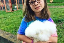Silkie Chickens Online Community / If you would like to be a part of our group pinning Silkies Online community, just send me an email at  silkiechickensonline@gmail.com and I will add you to our group board.