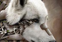 zvířata fantasy