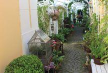 My garden / Min älskade trädgård i Hököpinge
