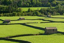 Entorno natural y medioambiente / Entorno natural en el que crecen las diversas razas de vacuno y ovino en el Reino Unido
