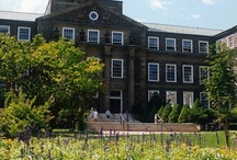 Dalhousie University / Halifax, Nova Scotia, Canada