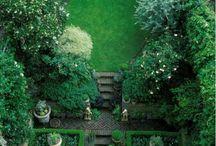 Small /modern garden